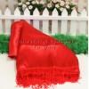 Red Cloth Door..
